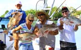A great day with Capt. Chuck Williams off of Venice Inlet, FL