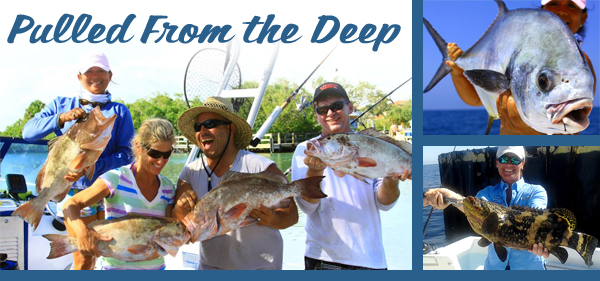 Area Fishing - Englewood, Venice, Boca Grande - Gulf Coast Charter Brokers